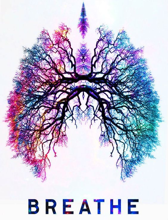 color-lungs